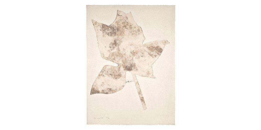 Jannis Kounellis - Untitled (La Rosa)
