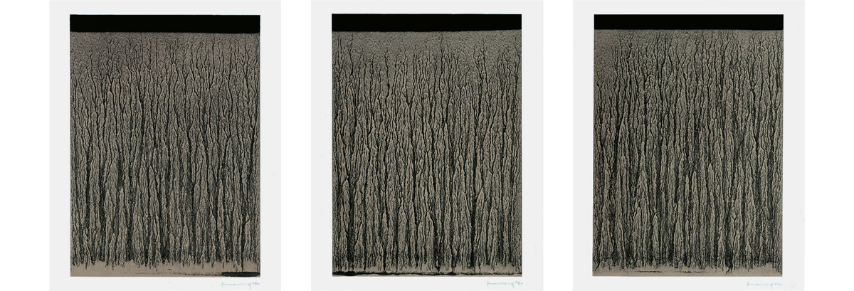 Richard Long - River Avon Mud Drawings