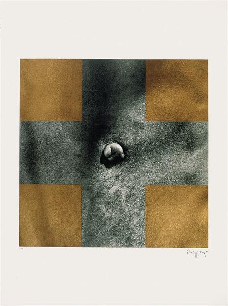Robert Mapplethorpe - Cross