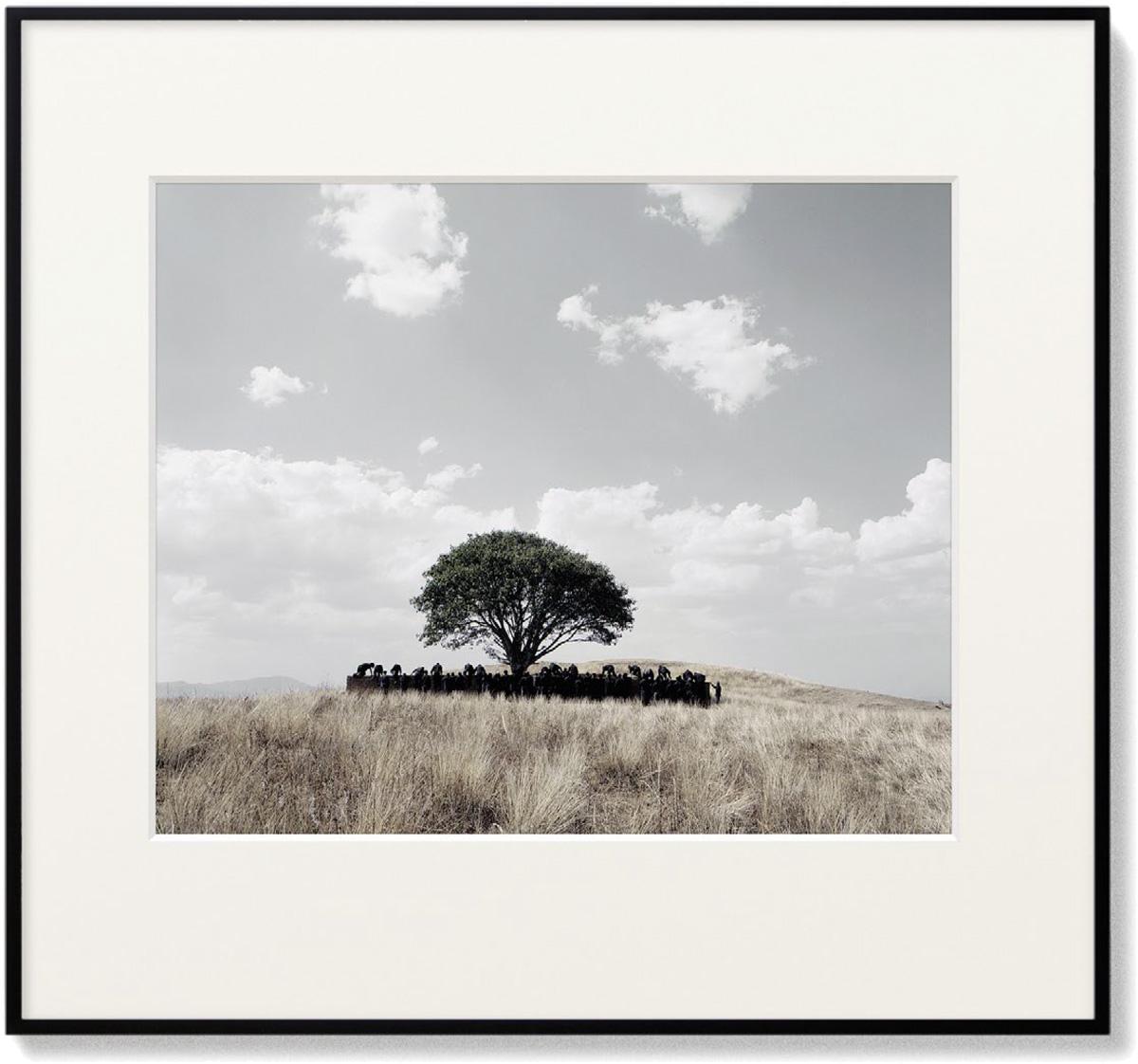 Shirin Neshat - Untitled (Tooba)