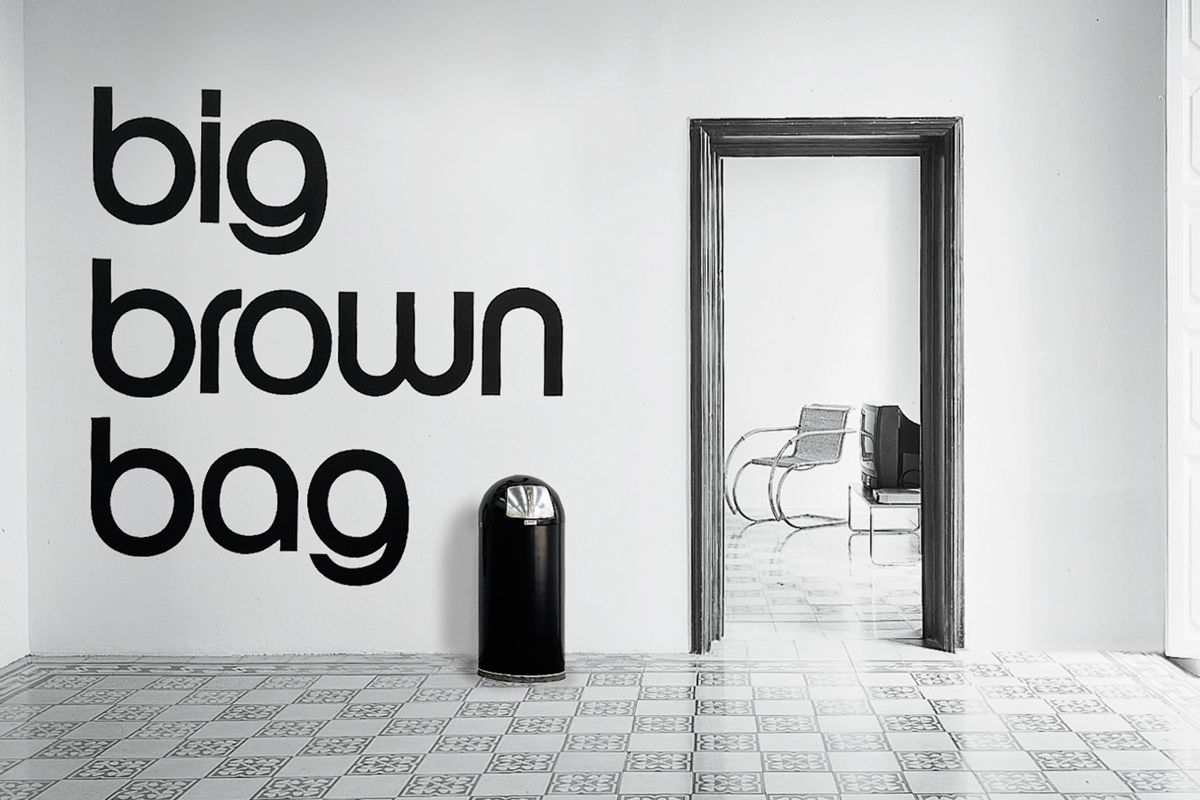 Haim Steinbach - Big brown bag