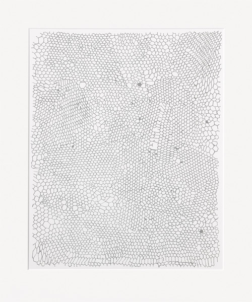 Rachel Whiteread - Untitled (Nets)